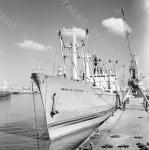 """1-119832-ч/б Грузовое судно """"Bahia de cochinos"""" (""""Залив свиней"""") у пристани в порту г. Гаваны. Куба, г.Гавана. Январь 1974г. Фот. Соболев В."""