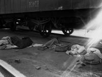Умершие от голода. Поволжье. 1921. РГАКФД
