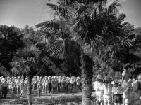 Поднятие флага на линейке в пионерском лагере «Артек».