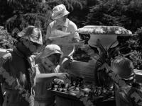 Пионеры лагеря «Артек» играют в шахматы.