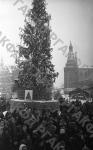 Москвичи и гости столицы у новогодней елки на Манежной площади. Москва, 1946 г. Автор Э. Евзерихин.  РГАКФД.