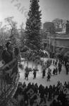 Новогодний праздник в московском саду «Эрмитаж». Москва, 1946 г. Автор Э. Евзерихин.  РГАКФД.