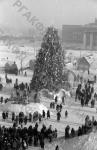 Елка, установленная в дни новогоднего праздника на площади имени Сталина в Новосибирске. Новосибирск, 1951 г. Автор В. Лещинский. РГАКФД.
