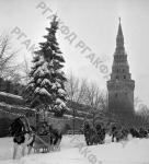 Катание детей на лошадях на территории Кремля в дни праздника Новогодней елки. Москва, 30.12.1966 г. Автор В. Егоров. РГАКФД.